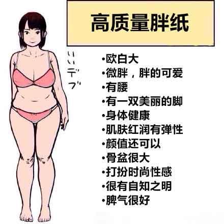高质量胖纸