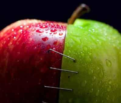 强扭的瓜不甜,但是解渴。