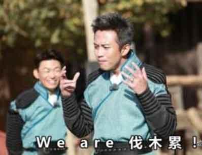 we are 伐木累