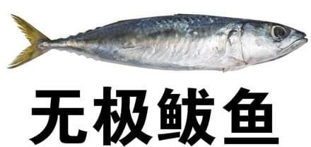 无极鲅鱼什么梗 无极鲅鱼出处何处?